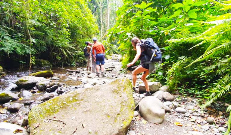 Tourists hiking and walking towards Themi Hill waterfall during a Staajabu Tour
