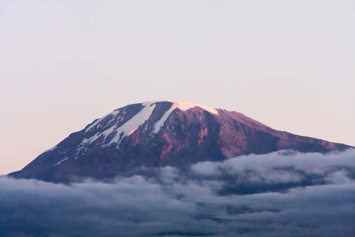 Mount Kilimanjaro at dawn with shades of clouds beneath it by Staajabu Travel