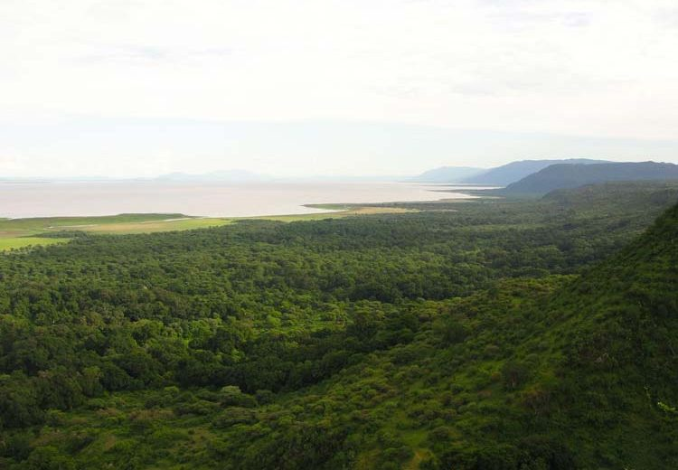Beautiful view of the great rift valley escarpment wall with green forest and Lake Manyara on the far end.